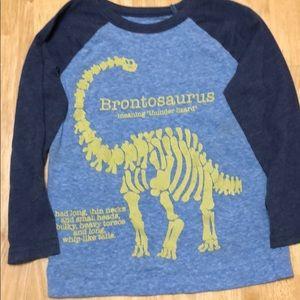 Little boys long sleeve dinosaur tee.